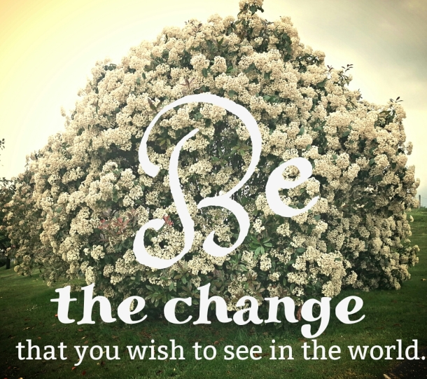 Be the change that you wish to see