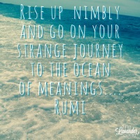 Rise up nimbly and go on your strange journey to the ocean of meanings.... Rumi